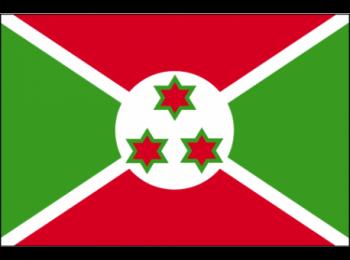 PLAN D'ACTION PRIORITAIRE DU BURUNDI2018-2022>>DEVELOPPEMENT DU SECTEUR DE PROTECTION SOCIAL